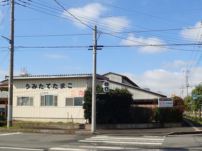 松本養鶏場