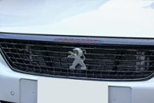 308SW (ワゴン)プジョー(純正) GTI用フロントグリルの単体画像