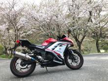 ニンジャ250BEET JAPAN NASSERT Evolution Type Ⅱの単体画像