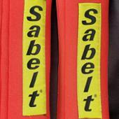 Sabelt 3インチタイプ(F1)パッド