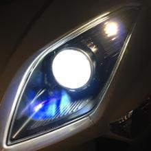 マジェステイ4d9Sphere Light スフィアLED RIZING H7 5500Kの全体画像