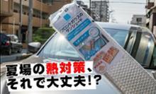 PAPAGO JAPAN INC. GoSafe S70GS1