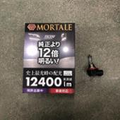 VELENO MORTALE 12400lm LEDヘッドライト・フォグ
