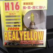 TMY CORPORATION RG REALYELLOW H16