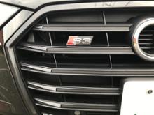 S3(セダン)Audi純正(アウディ) USフロントラジエターグリルの全体画像