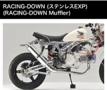 ゴリラOVER RACING RACING-DOWN (ステンレスEXP)の全体画像