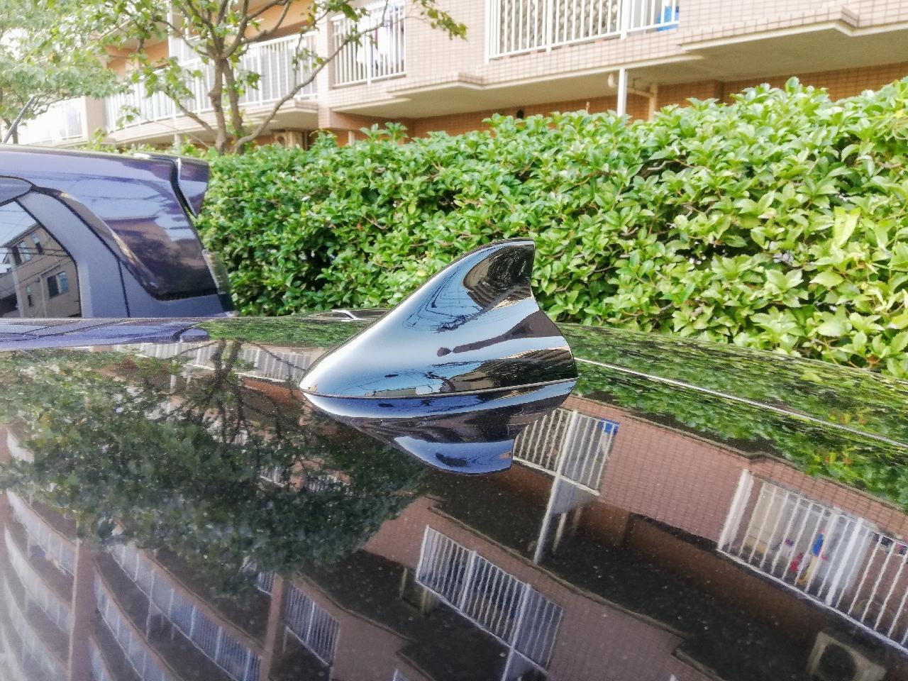 RAMBLE Shark Fin Antenna  Renault Clio