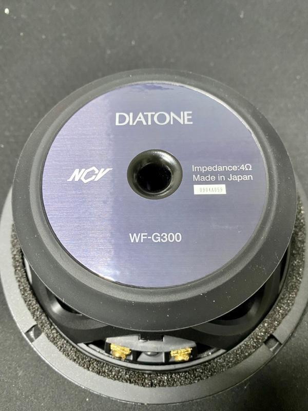 三菱電機 DS-G300