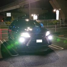 RXPIAA LEDヘッドライト用バルブ H8/H11/H16 / LEH102の全体画像