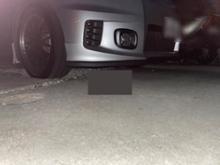 フリードスパイクコーナン / コーナン商事 コーナン オリジナル ガードクッション L型90cm ブラック L(の単体画像