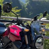 DAYTONA(バイク) ハイビジミラー ROUND M10 ブラック/ロー