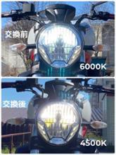 モンスター821Sphere Light 二輪車用 コンパクトLEDバルブ ライジングアルファ 4500kの全体画像