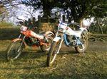 ホンダ TLM50