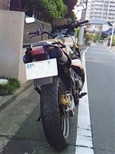 E.L.B.さんのTDR250 リア画像