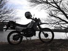 狼駄(シン・マツナガ)さんのMTX125R メイン画像