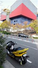 ☆りょうやん☆さんのマジェスティC250スペシャルリミテッドエディション リア画像