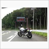 もん吉君さんのMONSTER400 (モンスター)