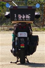 ピーチ味さんのビーウィズ125X リア画像