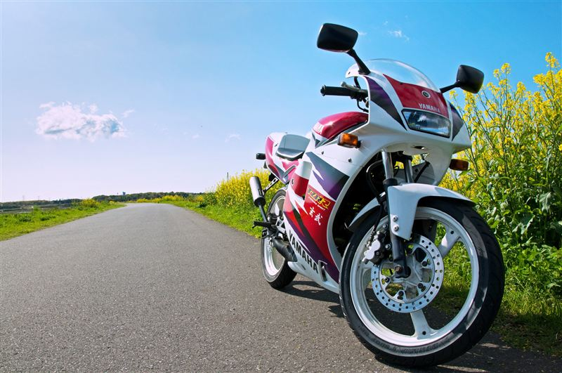 manu_chaoさんのTZR50R