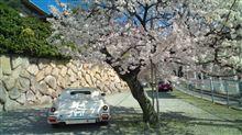 mahirunofukurouさんのラ・セード リア画像