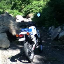 D・R・TさんのMTX50R リア画像