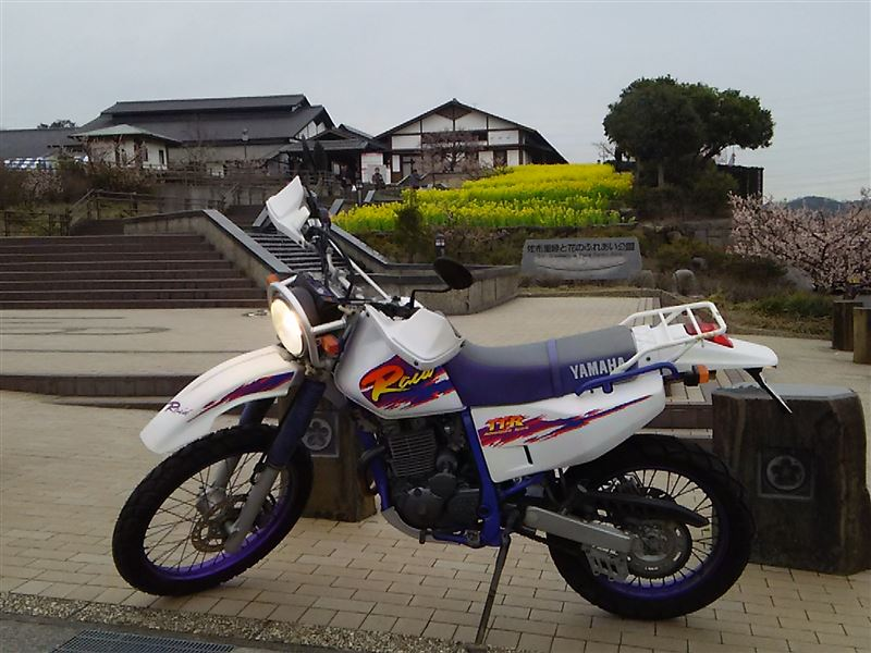 ヤマハ TTR Raid