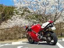 narukoさんの998 メイン画像