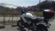 VFRsanoさんさんのVFR800X MUGEN リア画像