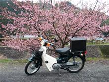 ぶらんさんのスーパーカブ50 SDX メイン画像