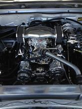 回転する松茸さんのインパラ インテリア画像