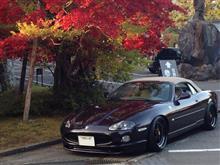 hosohiroさんのXKシリーズ コンバーチブル メイン画像