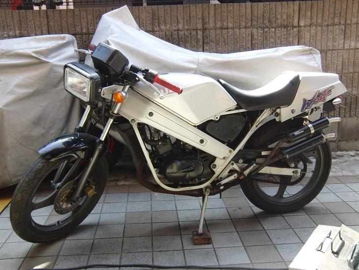 えるうぇいさんのウルフ50