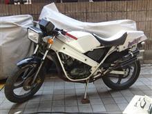 えるうぇいさんのウルフ50 メイン画像