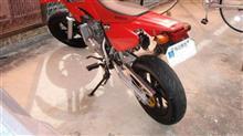へち師さんのXR50 モタード リア画像