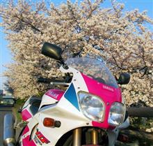 NiiさんのYZF750R メイン画像