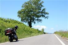 Roadexさんのイナズマ1200 リア画像