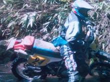 ジフさんのXR250R リア画像