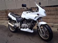Giorcub-Riderさんのゼルビス メイン画像