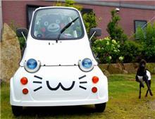 ランクルマニアさんのマイクロカー メイン画像