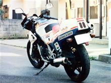 doimoriさんのNS250R リア画像