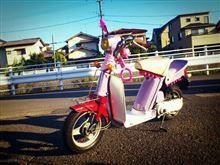 ☆角蜂レーシング☆さんのパッソル メイン画像