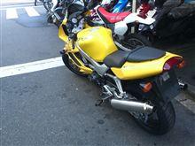 shikaさんのVTR1000F リア画像