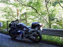 grimoyajiさんのRGV-Γ250SP 左サイド画像
