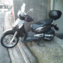 fifty_riderさんのスカラベオ メイン画像