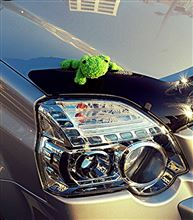 銀あるさんの愛車:日産 エクストレイル
