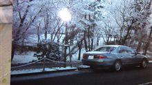 森のdemioさんのアンフィニMS-8 左サイド画像