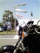 ぴしナビさんのエリミネーター900 メイン画像