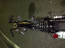 ま ぁさんのXL1200C リア画像