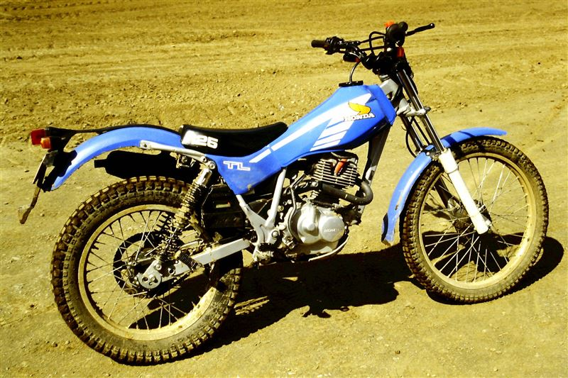 minatorico-racingさんのTL125