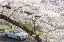 アガサさんの愛車:BMW 3シリーズカブリオレ